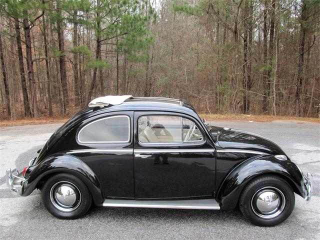 Picture of '62 Beetle - PBHU