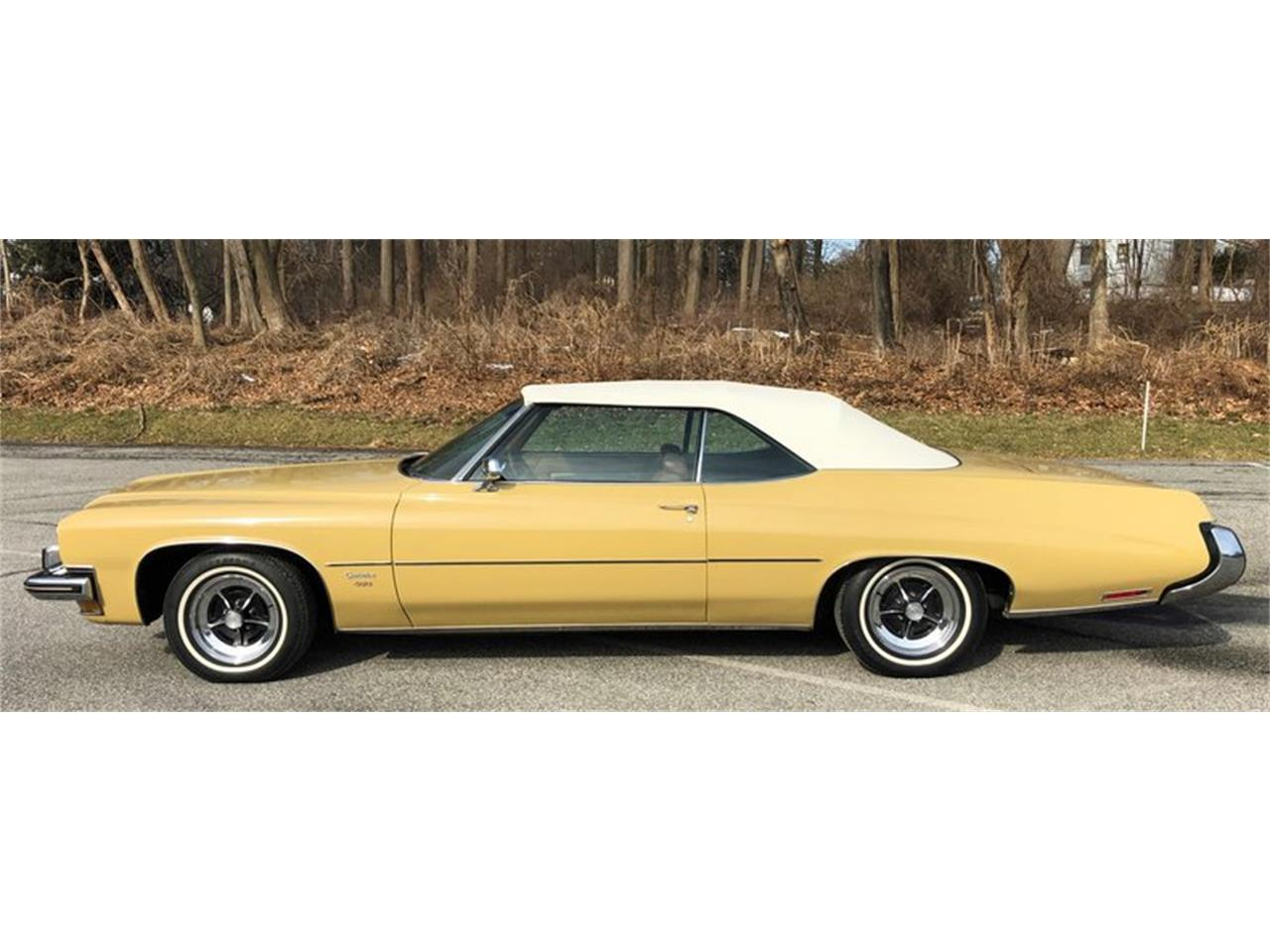 Large Picture of '73 Buick Centurion - PBP7