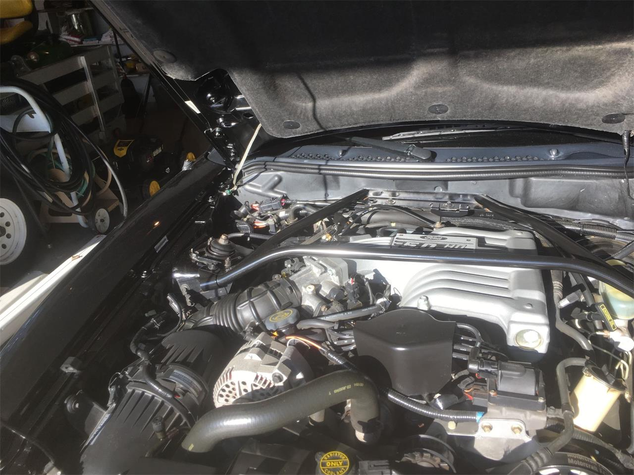 Large Picture of '94 Mustang GT - PC5A