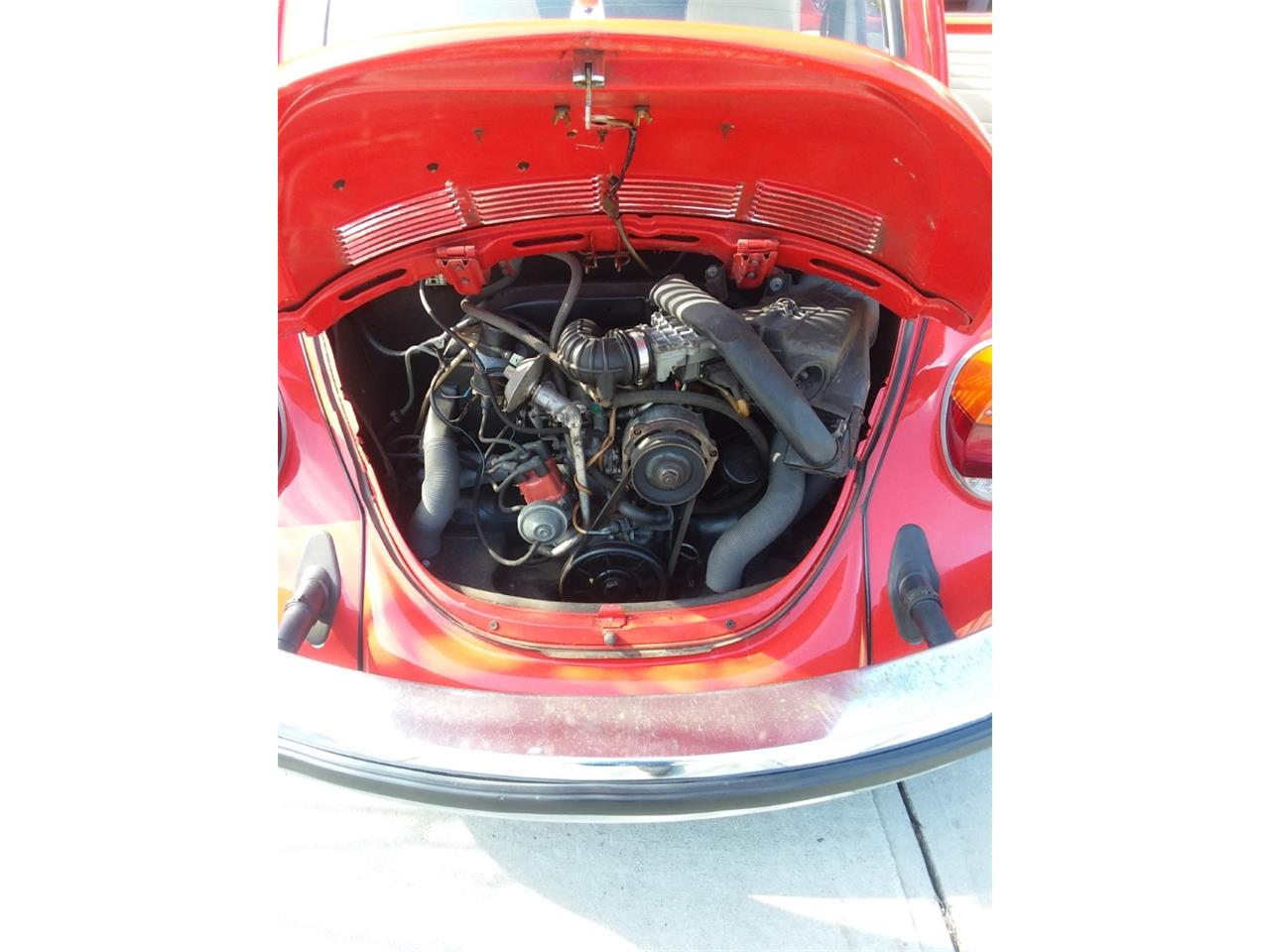 Large Picture of '75 Beetle - PCLO