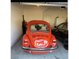 Picture of '75 Beetle - PCLO