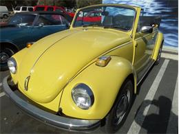 Picture of '72 Beetle - PDJQ