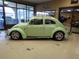 Picture of '59 Beetle - PE0Q
