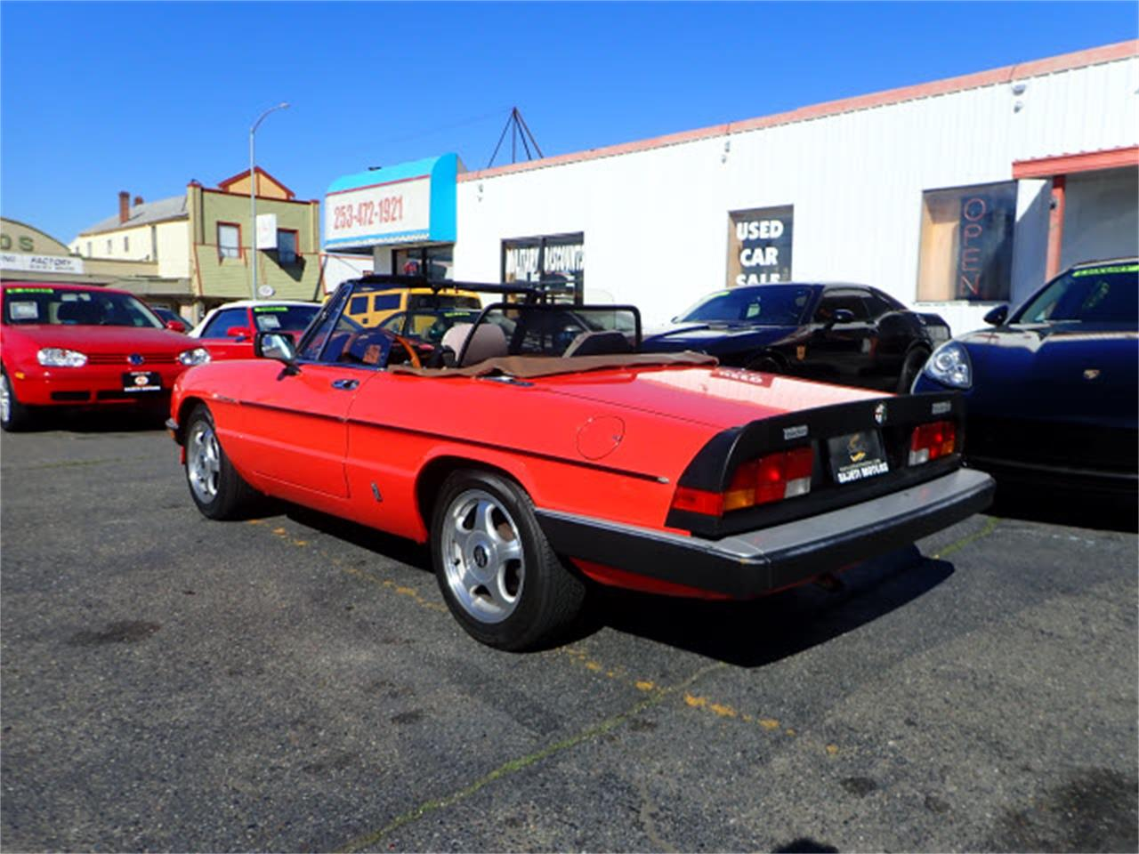 Large Picture of '83 Spider located in Washington - PE1H