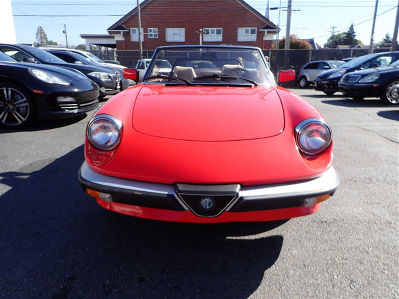 Large Picture of '83 Spider Offered by Sabeti Motors - PE1H