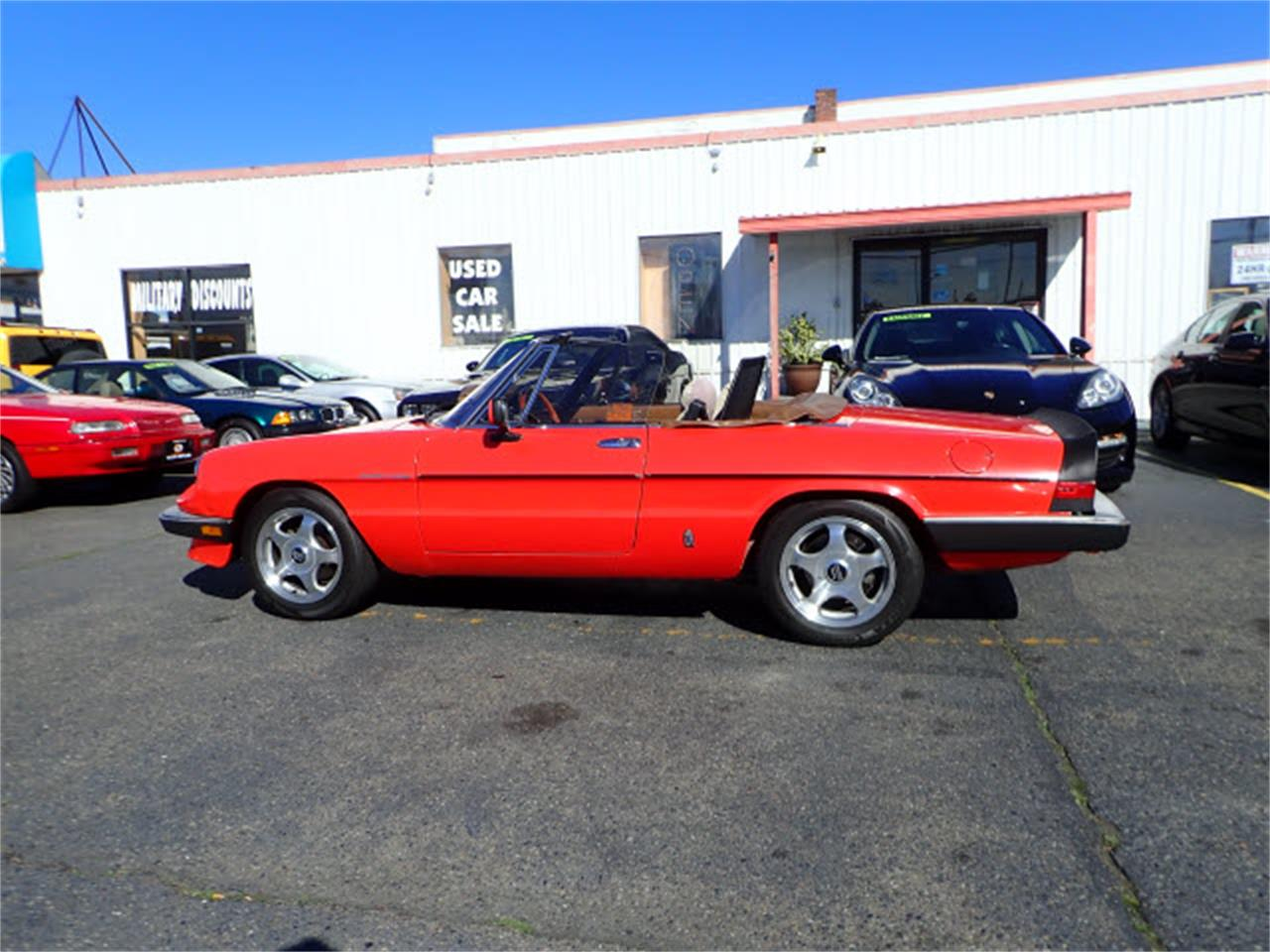 Large Picture of 1983 Alfa Romeo Spider located in Tacoma Washington Offered by Sabeti Motors - PE1H