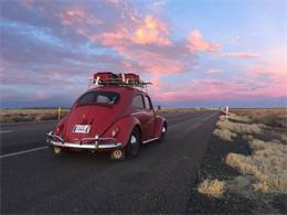 Picture of '64 Beetle - PAZL