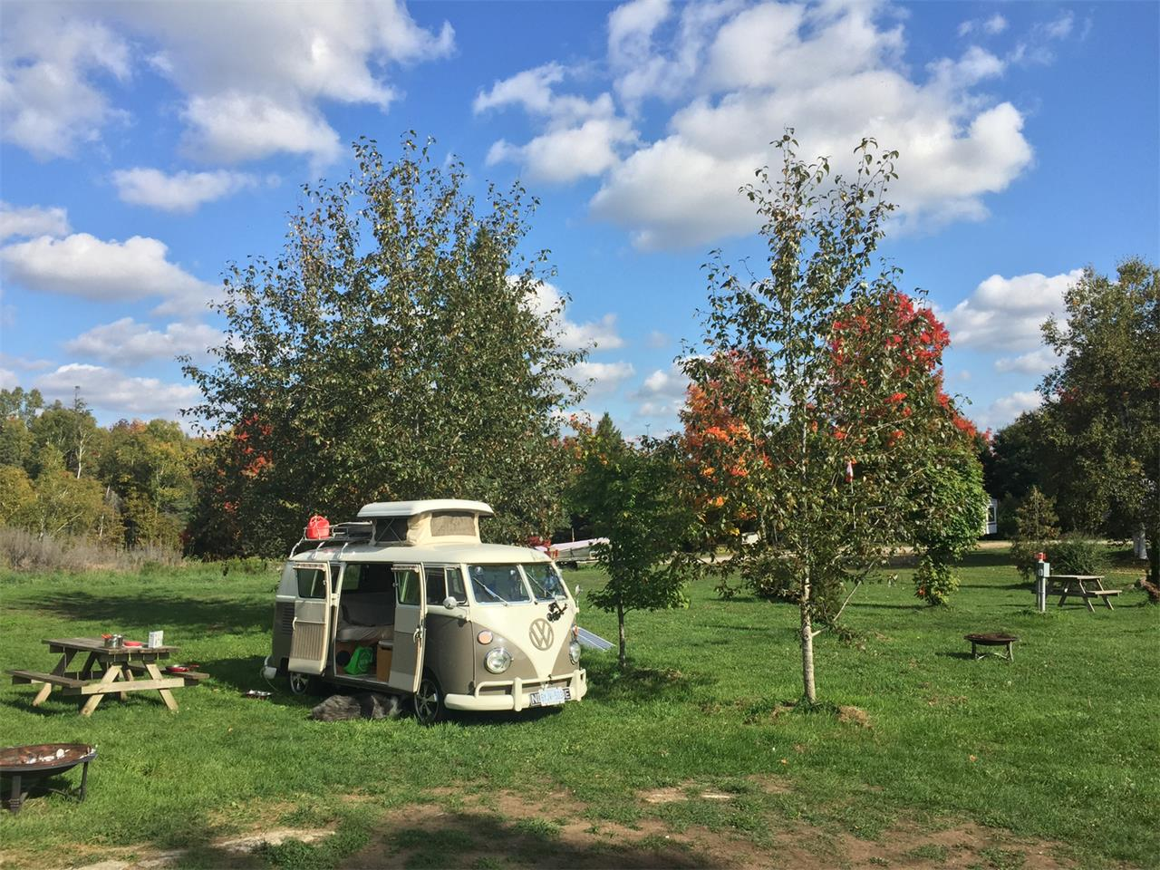 Large Picture of Classic '67 Volkswagen Camper located in Toronto Ontario - $110,000.00 - PFHI