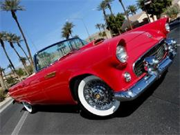 Picture of Classic 1955 Thunderbird located in Edmonton Alberta - $49,000.00 Offered by Mainly Muscle - PG0B