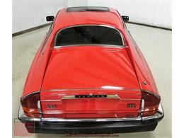 Picture of '85 XJS - PG0J