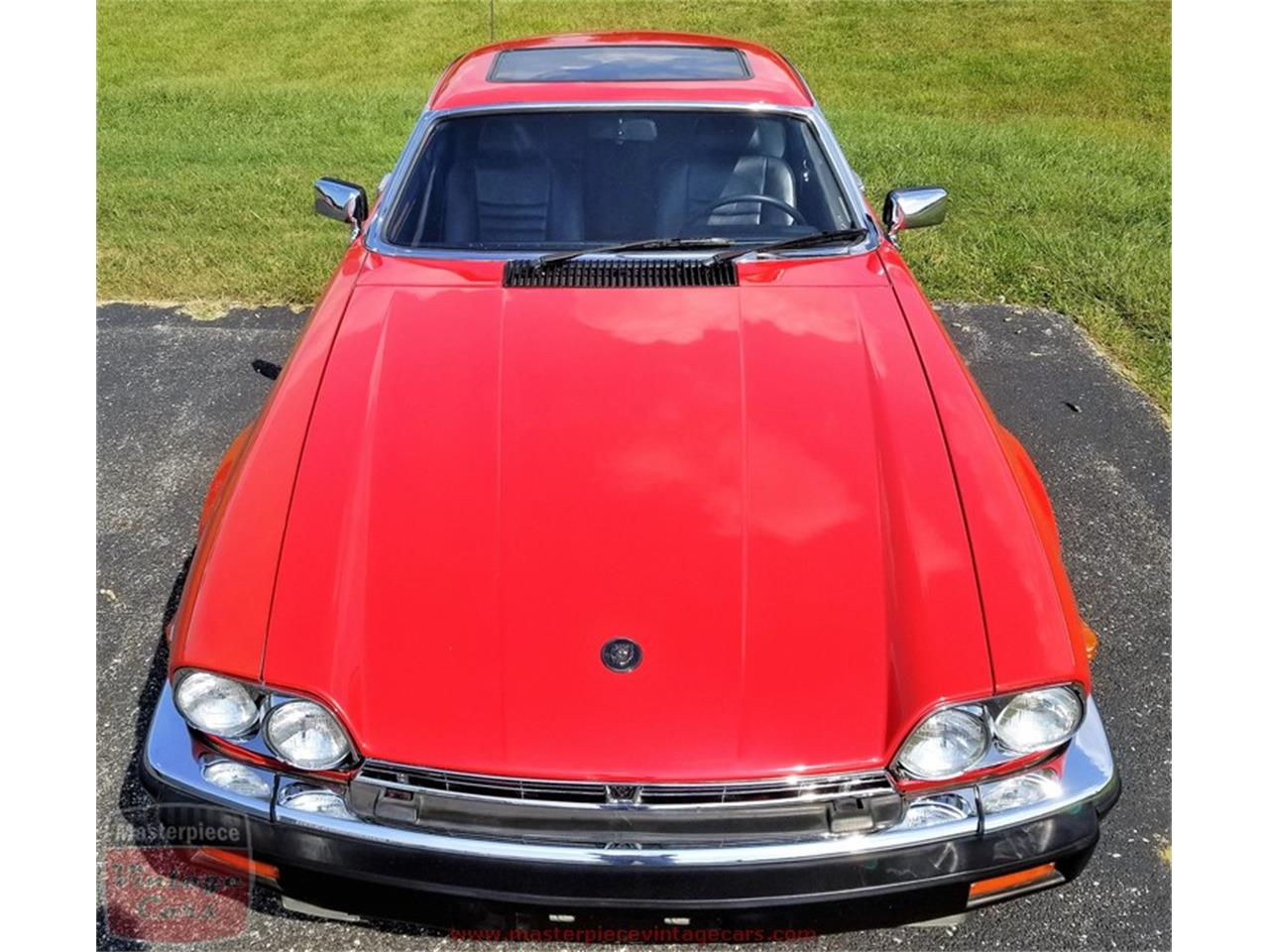 Large Picture of '85 XJS - PG0J