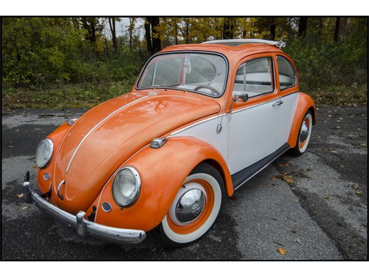 Large Picture of 1965 Volkswagen Beetle located in Indianapolis Indiana - $15,000.00 - PGAV