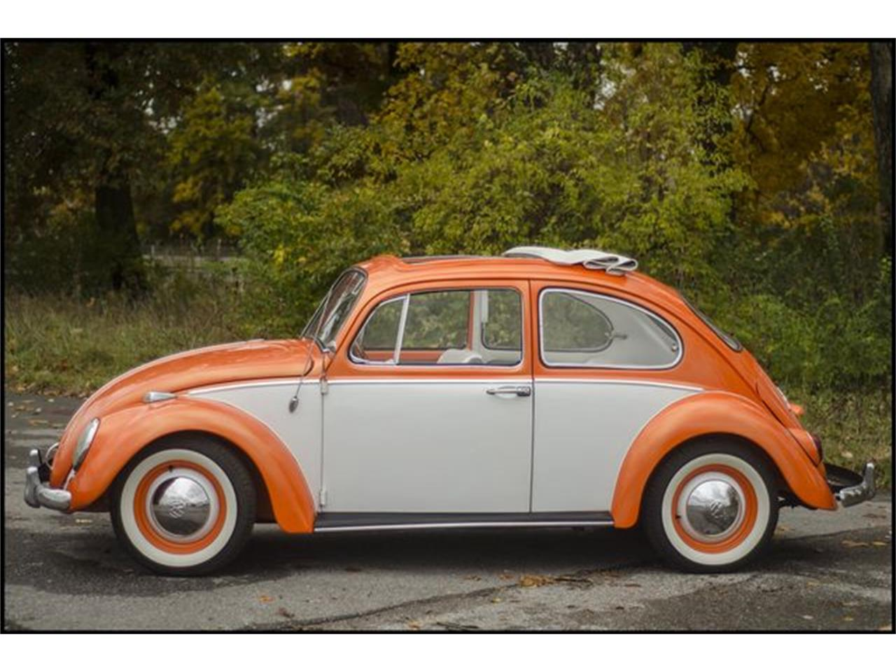 Large Picture of 1965 Volkswagen Beetle located in Indiana - PGAV