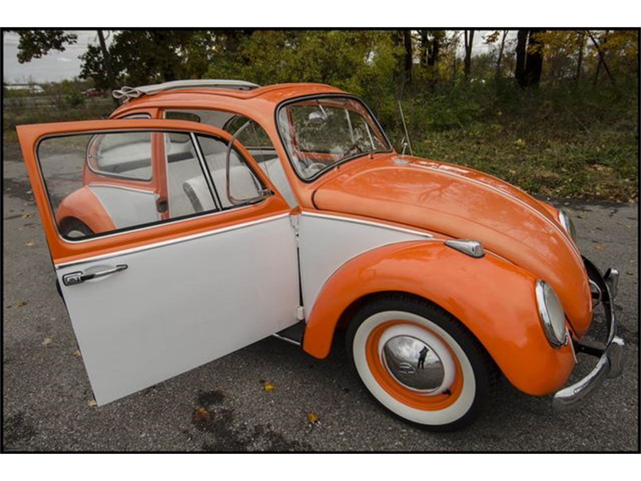 Large Picture of Classic '65 Volkswagen Beetle located in Indianapolis Indiana Offered by CarZip - PGAV