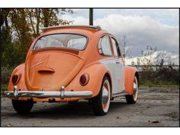 Picture of Classic 1965 Beetle Offered by CarZip - PGAV