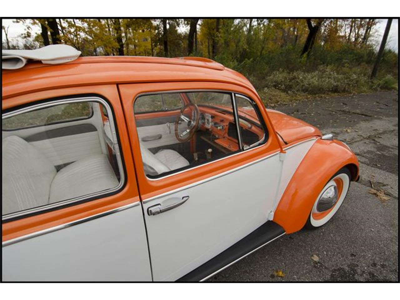 Large Picture of 1965 Beetle - PGAV