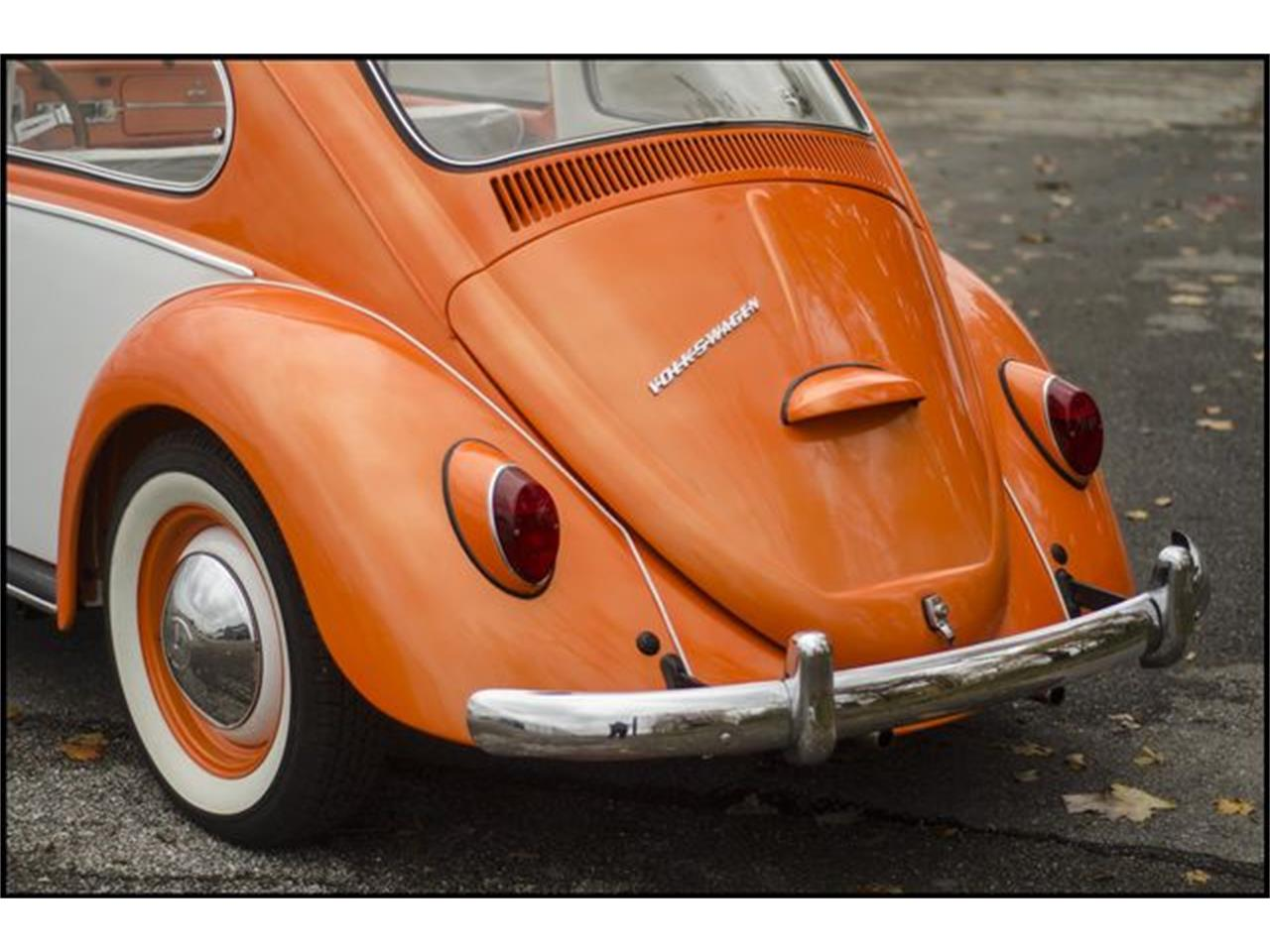 Large Picture of Classic '65 Beetle located in Indiana Offered by CarZip - PGAV