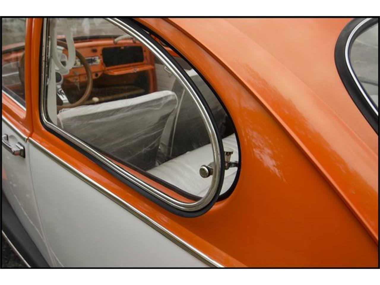 Large Picture of '65 Beetle located in Indiana - $15,000.00 Offered by CarZip - PGAV