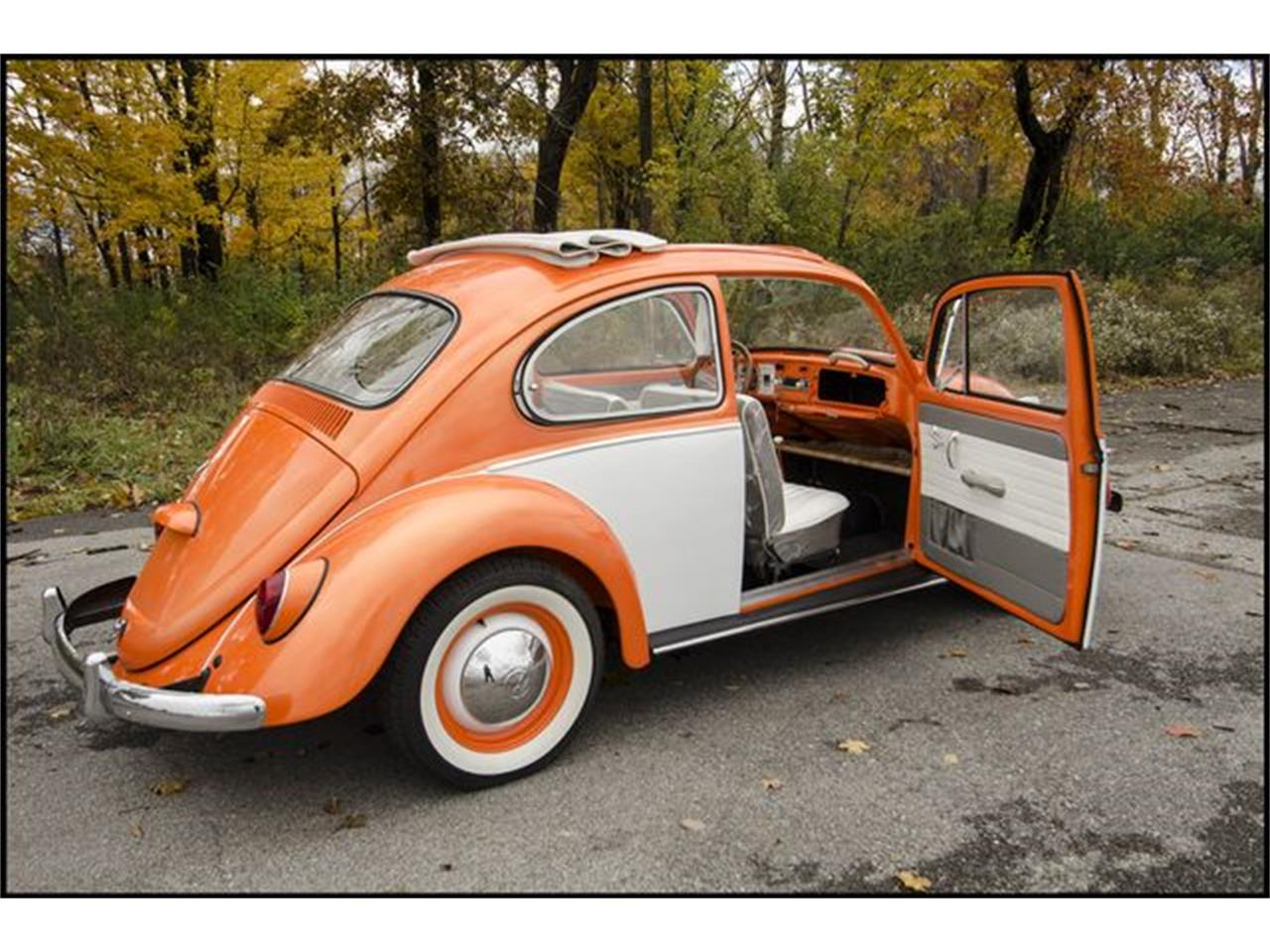 Large Picture of '65 Volkswagen Beetle located in Indianapolis Indiana - $15,000.00 Offered by CarZip - PGAV