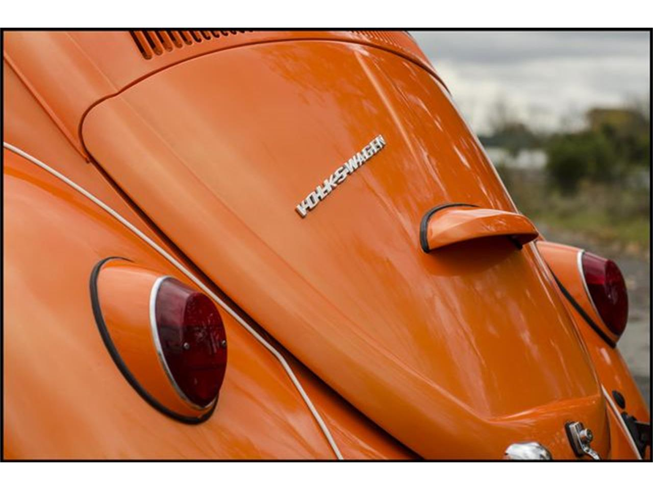 Large Picture of Classic '65 Beetle - $15,000.00 Offered by CarZip - PGAV
