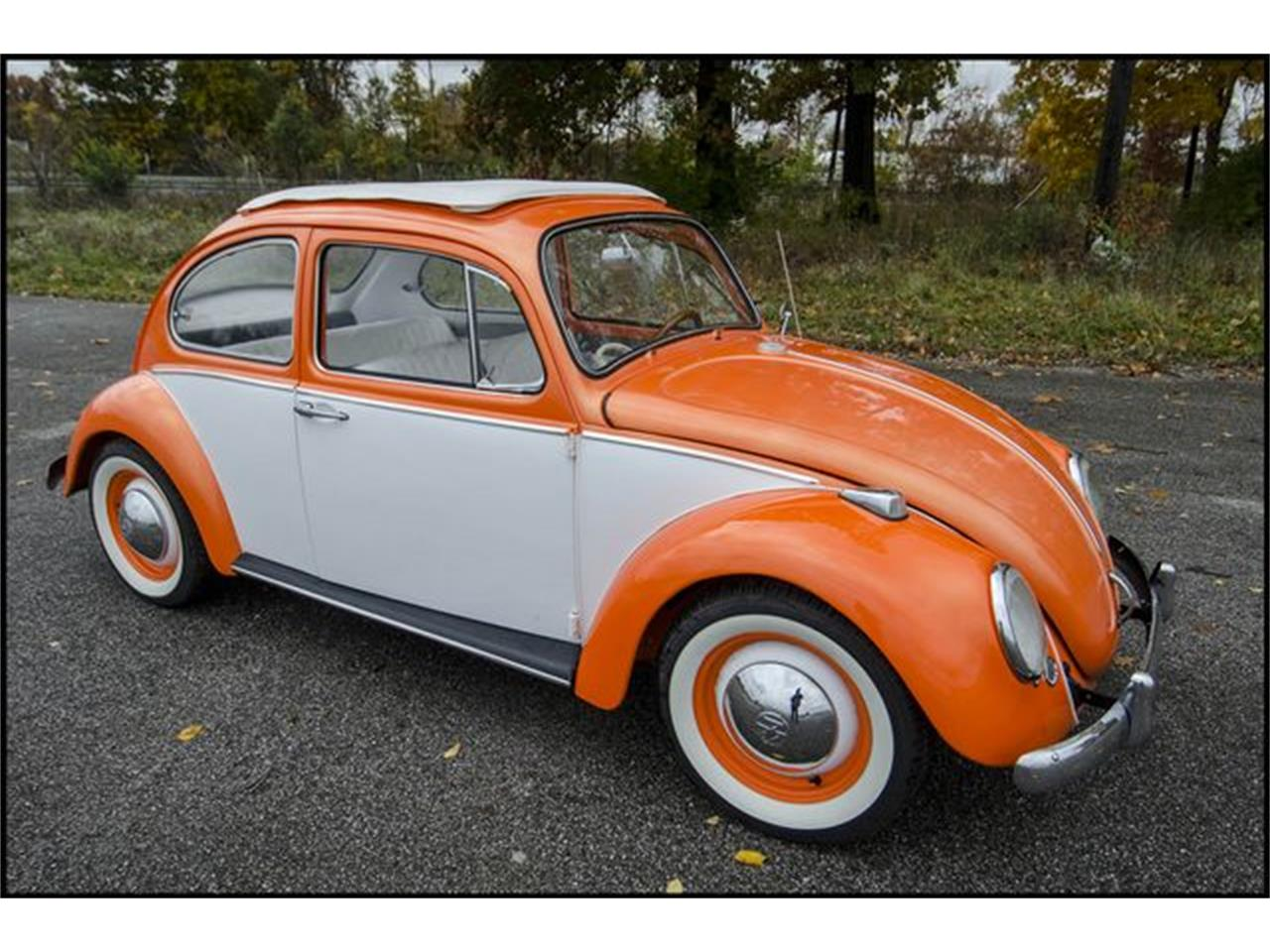 Large Picture of Classic '65 Beetle Offered by CarZip - PGAV