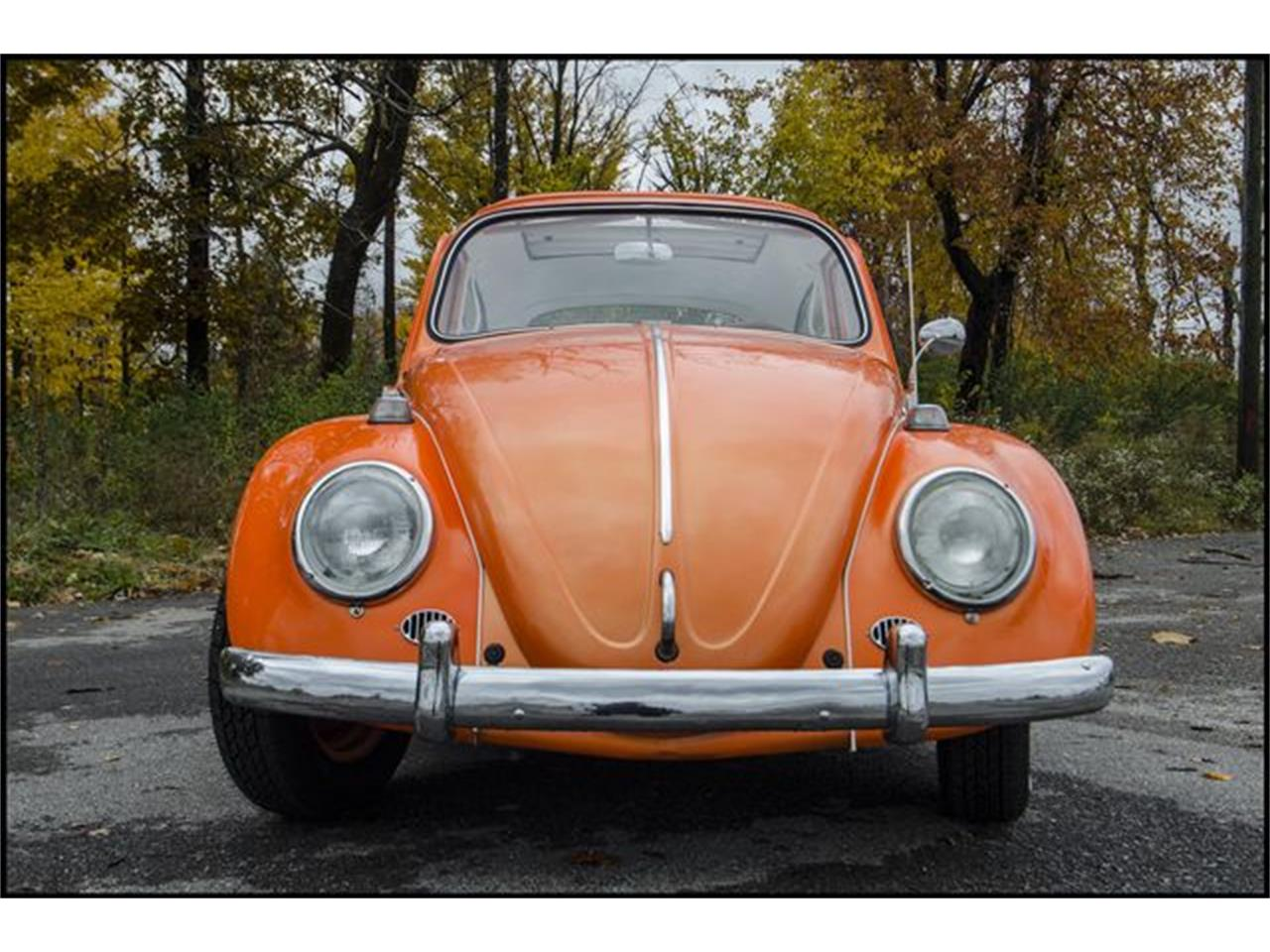 Large Picture of '65 Beetle located in Indianapolis Indiana - $15,000.00 - PGAV