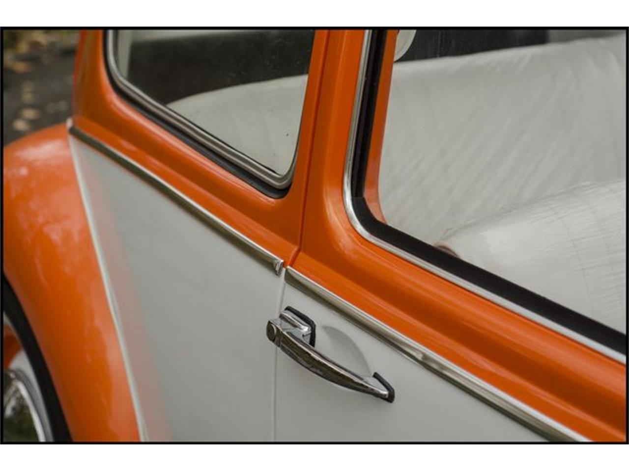 Large Picture of Classic 1965 Beetle located in Indianapolis Indiana - $15,000.00 - PGAV