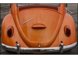 Picture of 1965 Volkswagen Beetle - PGAV