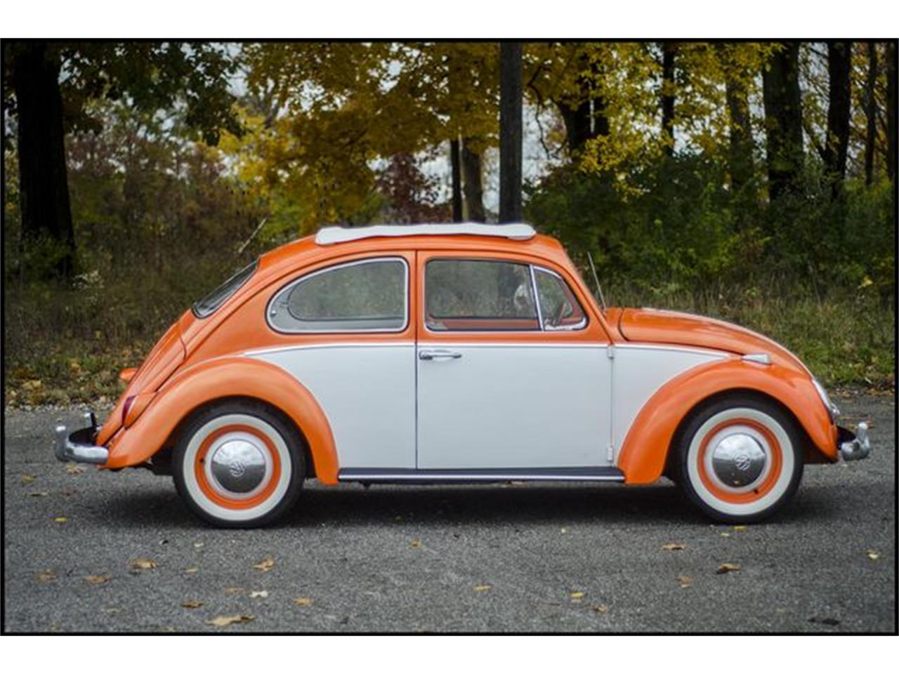 Large Picture of 1965 Beetle Offered by CarZip - PGAV