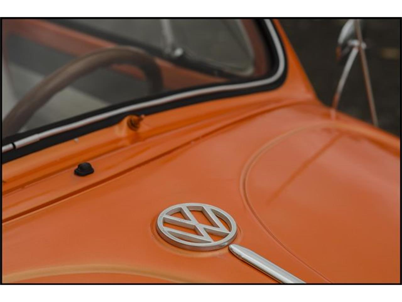 Large Picture of '65 Beetle located in Indiana Offered by CarZip - PGAV