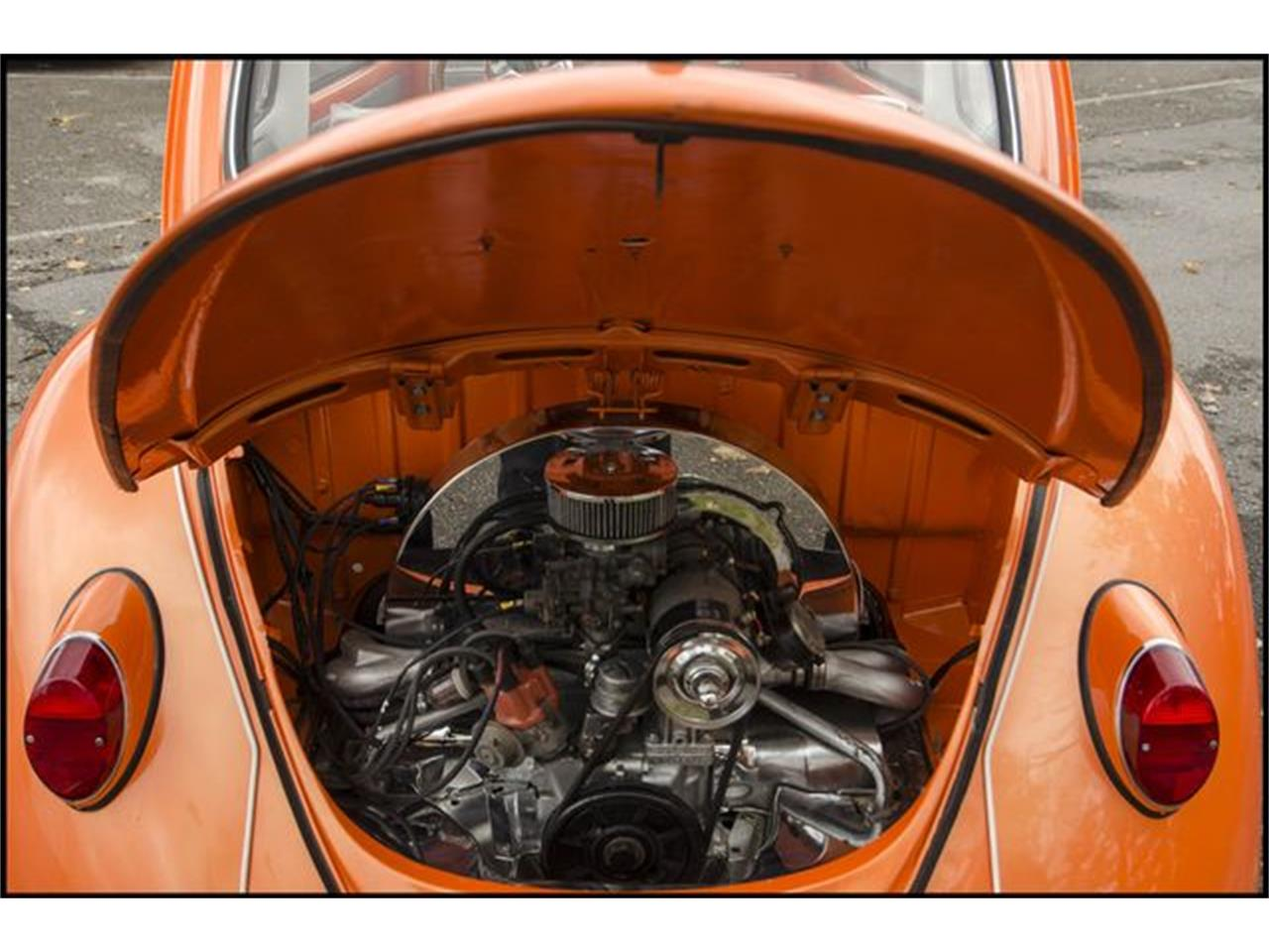 Large Picture of 1965 Volkswagen Beetle located in Indianapolis Indiana Offered by CarZip - PGAV
