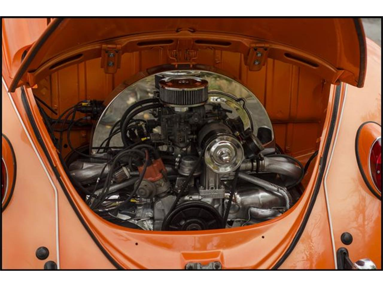 Large Picture of Classic 1965 Beetle located in Indianapolis Indiana - PGAV