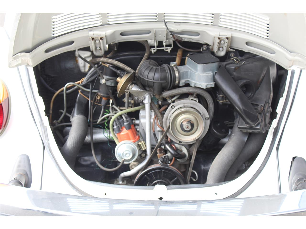 Large Picture of '79 Beetle - PGEN