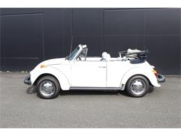 Picture of '79 Beetle - PGEN
