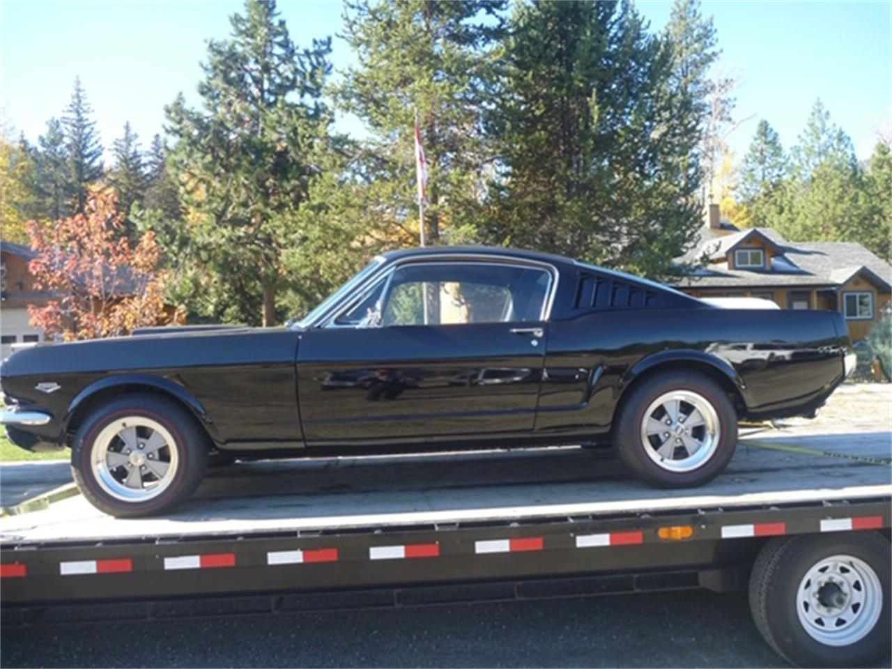 Large Picture of '66 Mustang - PB3T