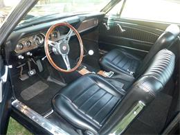Picture of '66 Mustang - PB3T