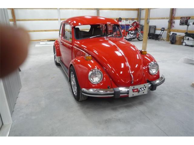 Picture of 1971 Beetle - PGSC