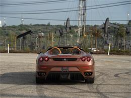Picture of '08 Spider - PGXV