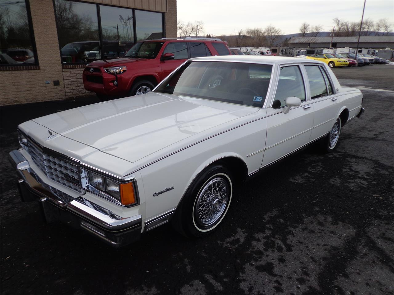 Large Picture of '85 Caprice - PH5C