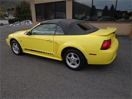 Picture of '02 Mustang - PH5O
