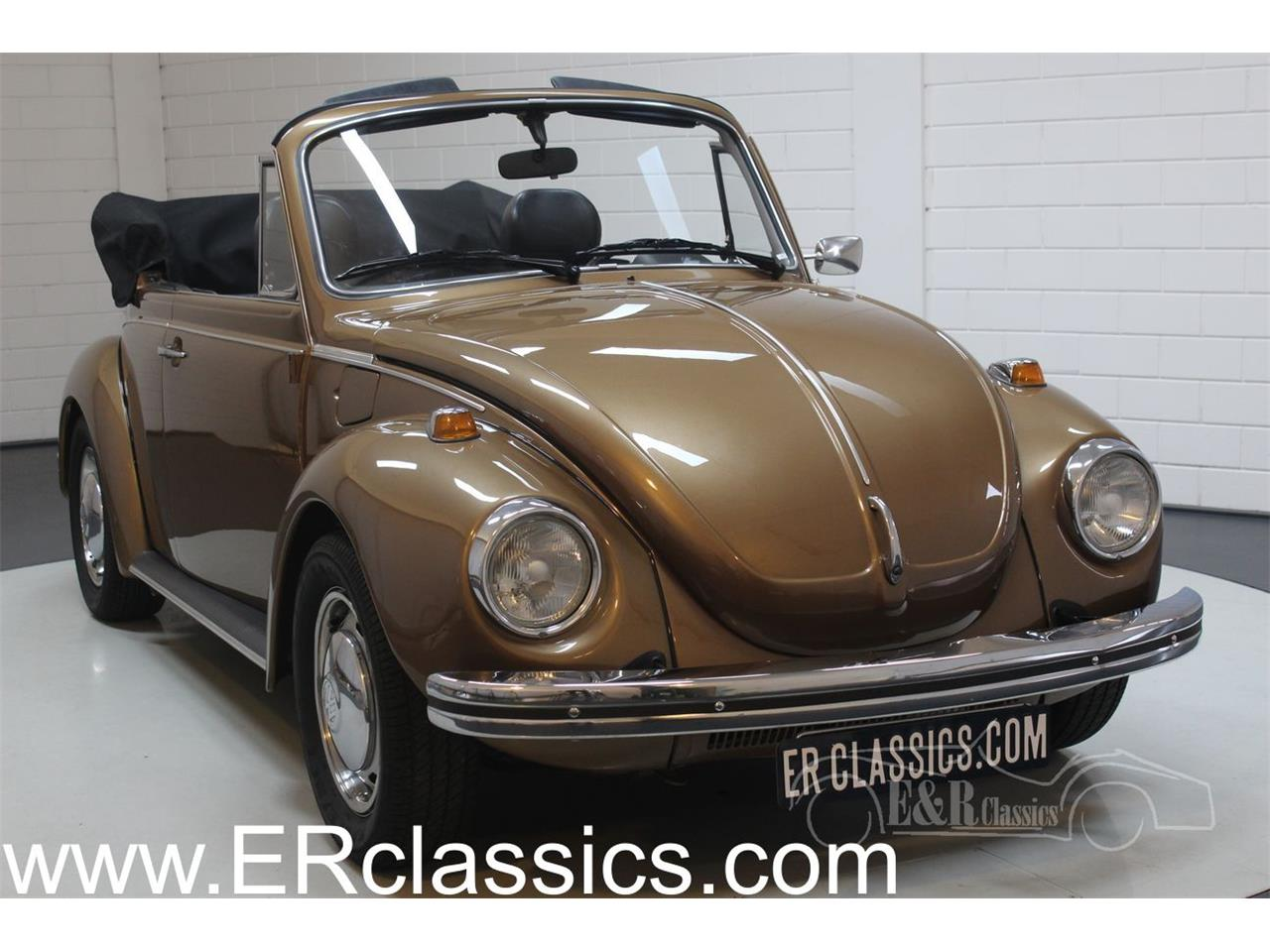 Large Picture Of 73 Beetle Phbn