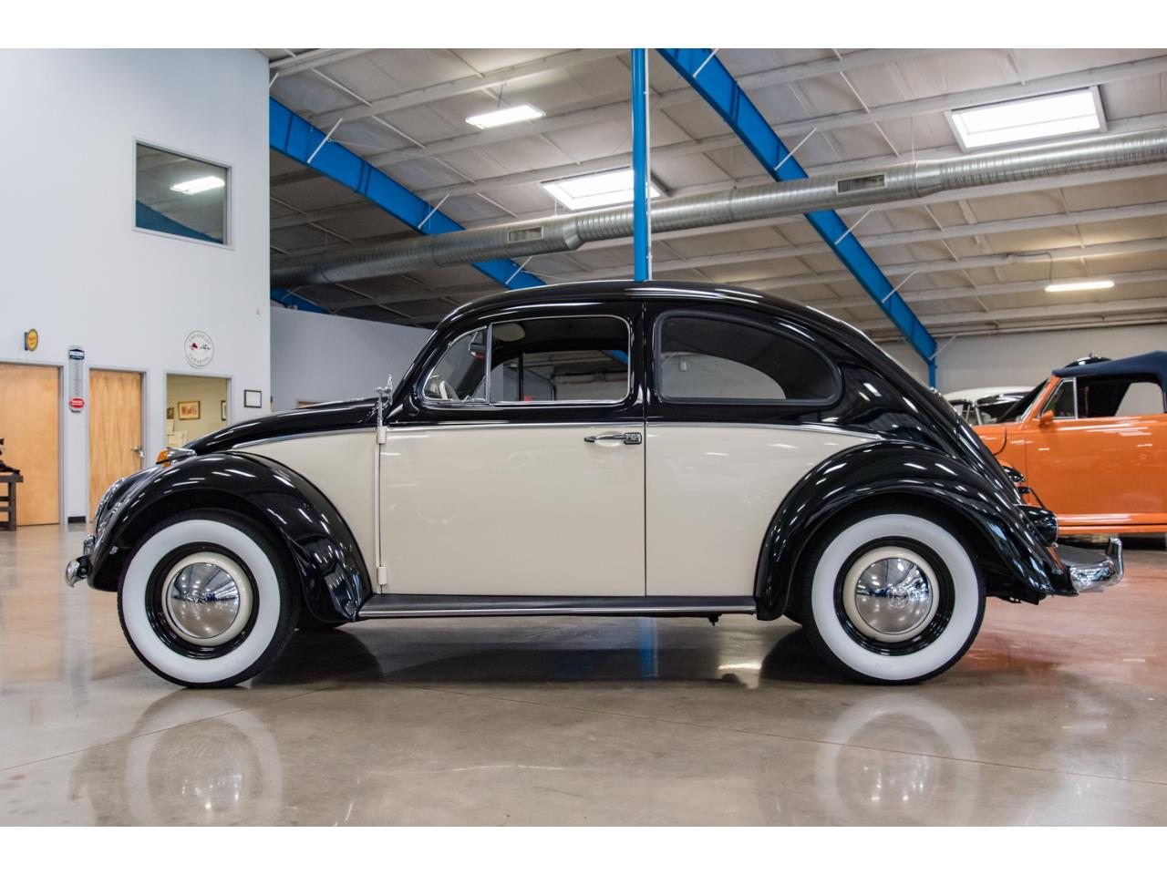 Large Picture of '61 Beetle - PHI8