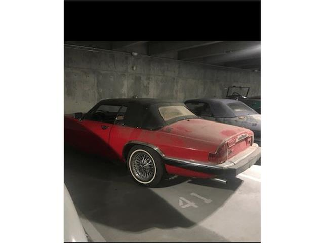 Picture of 1984 XJS Offered by  - PHYT