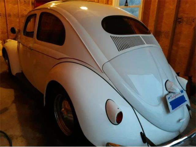 Picture of '55 Beetle - PI7Z
