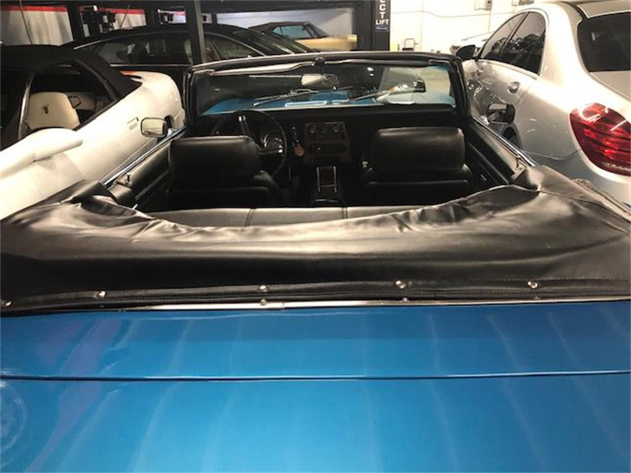 Large Picture of '68 Camaro - PJGD