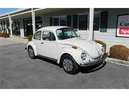 Picture of '73 Super Beetle - PJPB