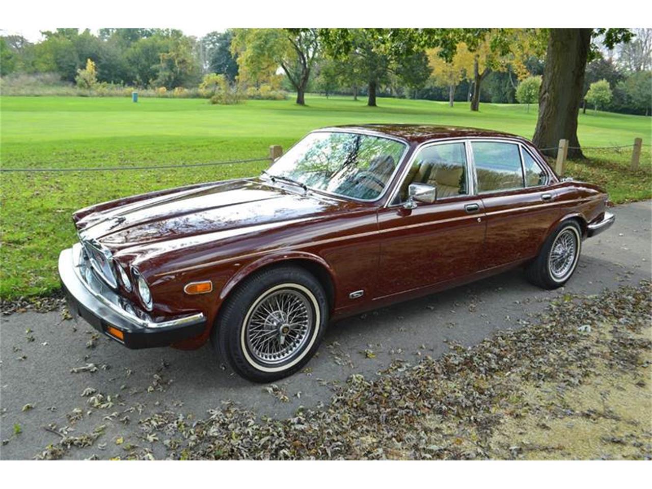 1984 Jaguar XJ for Sale   ClassicCars.com   CC-1192597