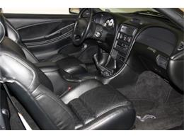 Picture of 1996 Ford Mustang SVT Cobra - $27,995.00 Offered by My Hot Cars - PKW8