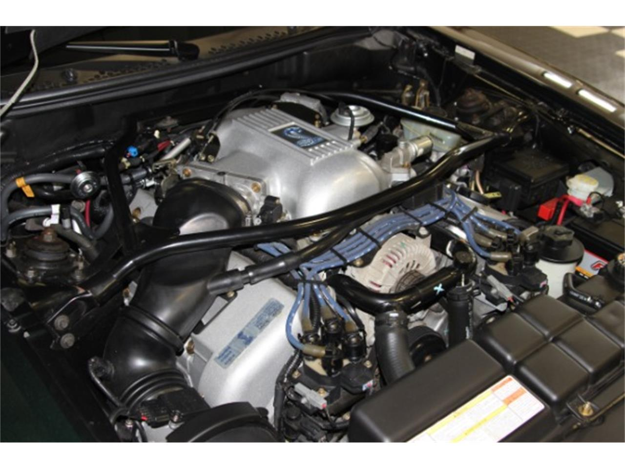 Large Picture of 1996 Ford Mustang SVT Cobra - PKW8