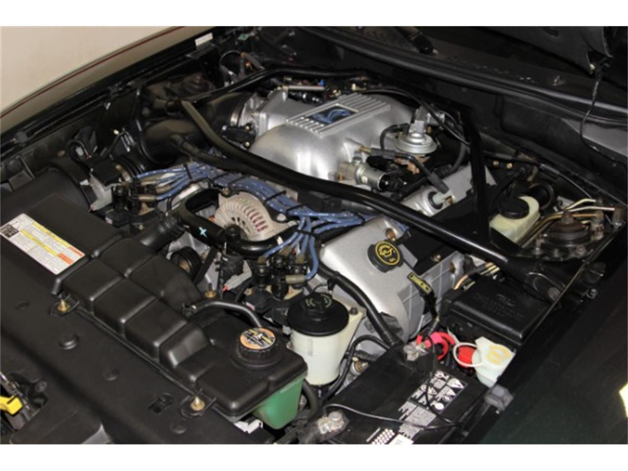 Large Picture of '96 Mustang SVT Cobra - PKW8